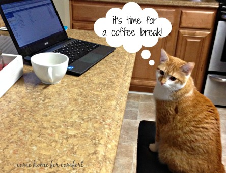 coffee break kitty