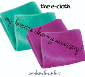 My Favorite Cleaning Accessory Ecloth