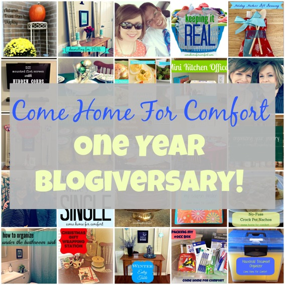 One Year Blogiversary Pic