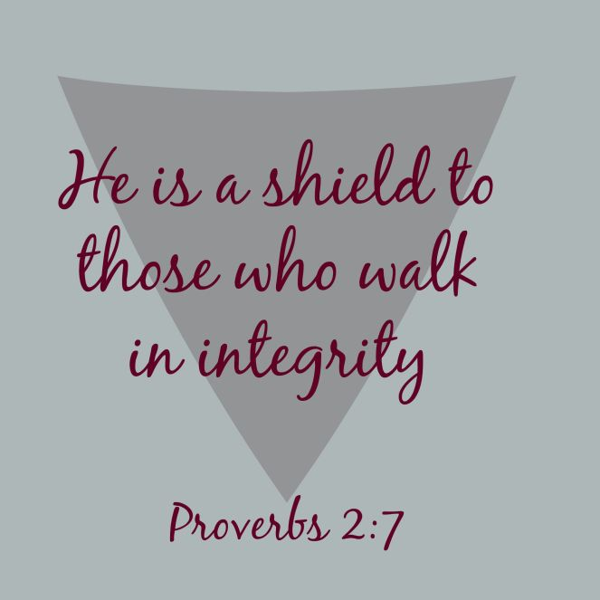 He is a shield via ComeHomeForComfort.com