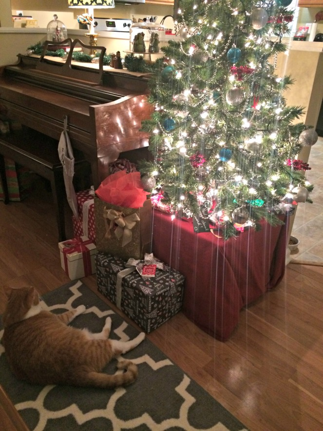 Christmas Recap 2