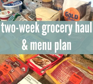 Grocery Haul and Menu Plan for two weeks of meals!