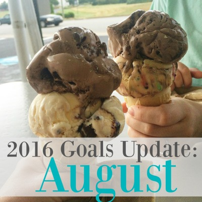 2016 Goals Update for August via ComeHomeForComfort.com