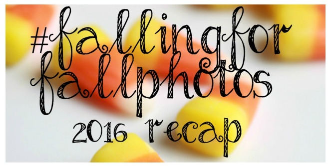 recap-falling-for-fall-photos