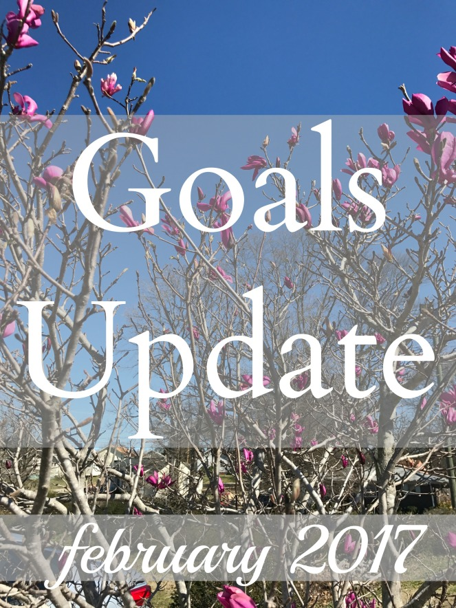 goals-update-feb-2017