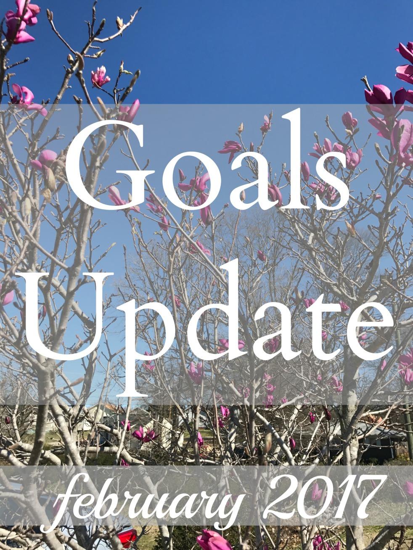 goals-update-feb-2017